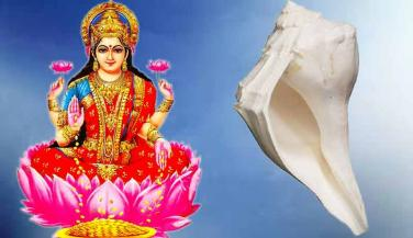 Goddess Laxmi will bless you when you use this Conch