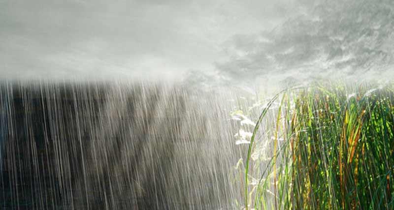 कब होगी बारिश ।